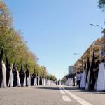 Sevilla 2015. La Sed (12)