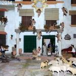 En Diariao de Sevilla (21)