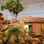 En el Centro de Estudios Hispanoamericanos (36)