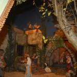 En la fundación Cajasol (19)