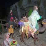 En la fundación Cajasol (57)