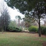 Parque Celestino Mutis (1)