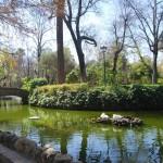 Parque  de Maria Luisa (26)