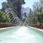 Parque  de Maria Luisa (46)