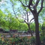 Prado  de San Sebastian   (8)