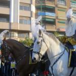 Sevilla 2015. Cabalgata Reyes Magos (17)