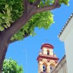Sevilla 2015. Convento de la Consolación (Los Terceros) (1)