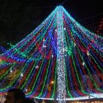 Sevilla Navidad. Alumbrado (23)