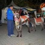 Sevilla Navidad. Alumbrado (26)