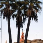 Sevilla Navidad. Alumbrado (28)