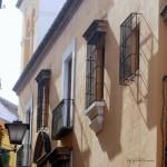 Sevilla, De Plza. Pilatos a Plza. Virgen de los Reyes (21)