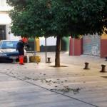 Sevilla. Antigua Juderia (De Plza. Zurradores a Igl. Santiago) (1)