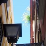 Sevilla. Antigua Juderia (De Plza. Zurradores a Igl. Santiago) (10)