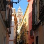 Sevilla. Antigua Juderia (De Plza. Zurradores a Igl. Santiago) (19)