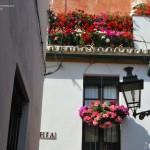 Sevilla. Barrio de Santa Cruz  (13)