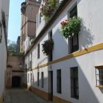 Sevilla. Barrio de Santa Cruz  (15)