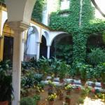 Sevilla. Barrio de Santa Cruz  (56)