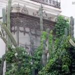 Sevilla. De Las Setas a San Pedro Alcantara (16)