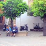 Sevilla. Exterior y entorno (20)